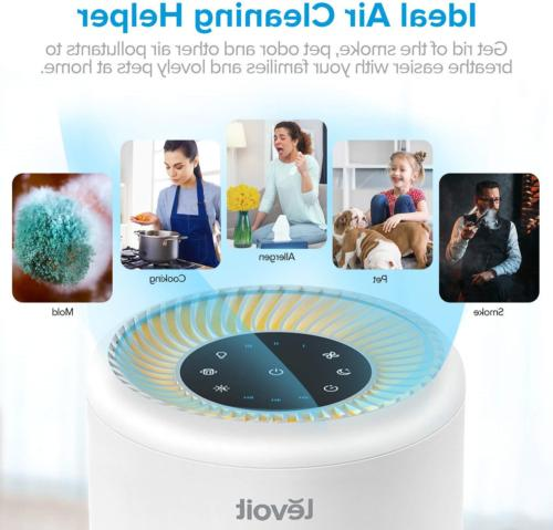 LEVOIT Purifier Home and Hair, Filter,
