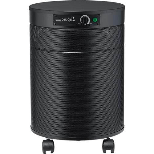 Airpura H600 HEPA Air Purifier