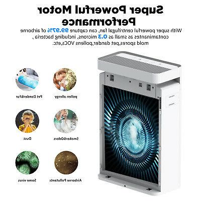 Powerful Large Room Purifier Medical HEPA for Home Allergies